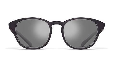 Gray tint sunglasses